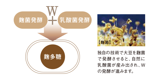 独自の大豆を麹菌で発酵され、自然に乳酸菌が生み出され、Wの発酵が進みます。